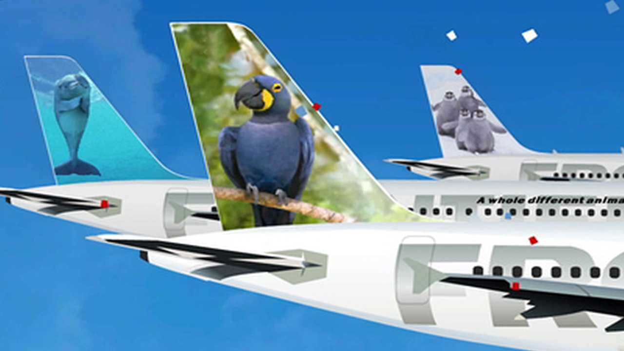 Polly the Parrot wins Frontier Airlines new animal search. April 18, 2012