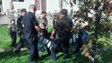 A bear is tranquilized after getting stuck in the backyard of a Highlands Ranch home on Sept. 26, 2012. (Tracy Trotter)
