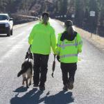 K-9 search teams look for Redwine (La Plata County Sheriff's Office)