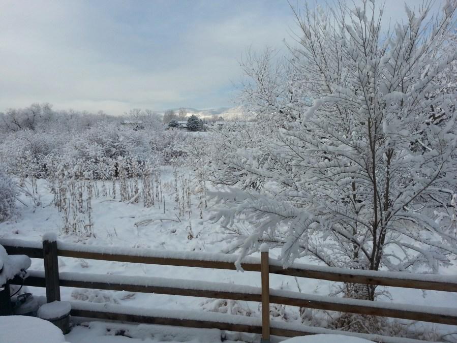 These Coloradans were enjoying a snowy, picturesque landscape.