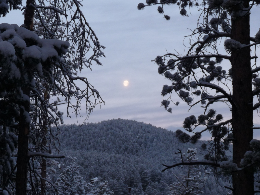 The moon sets over the snow in Evergreen.