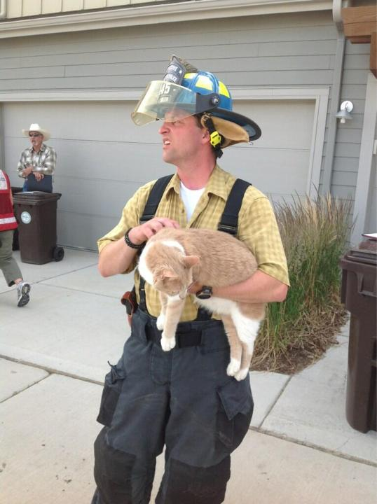 Firefighter soothes rescued feline.(Credit: Boulder Police)
