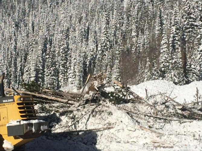 Debris field left by a very large, explosive-triggered avalanche. Photo courtesy: Colorado Avalanche Information Center