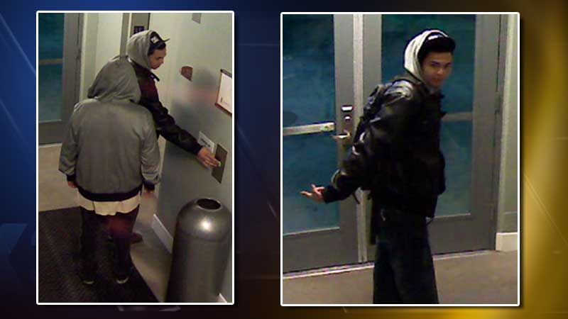 Denver police released photos of two men they said are breaking into apartments and condos downtown and stealing bicycles. (Photo: Denver police)