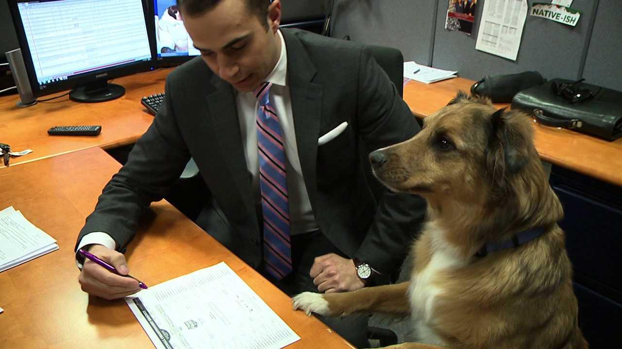 FOX31 Denver anchor/reporter Boris Sanchez gets expert help filling out his NCAA bracket
