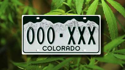 Colorado license plate over marijuana