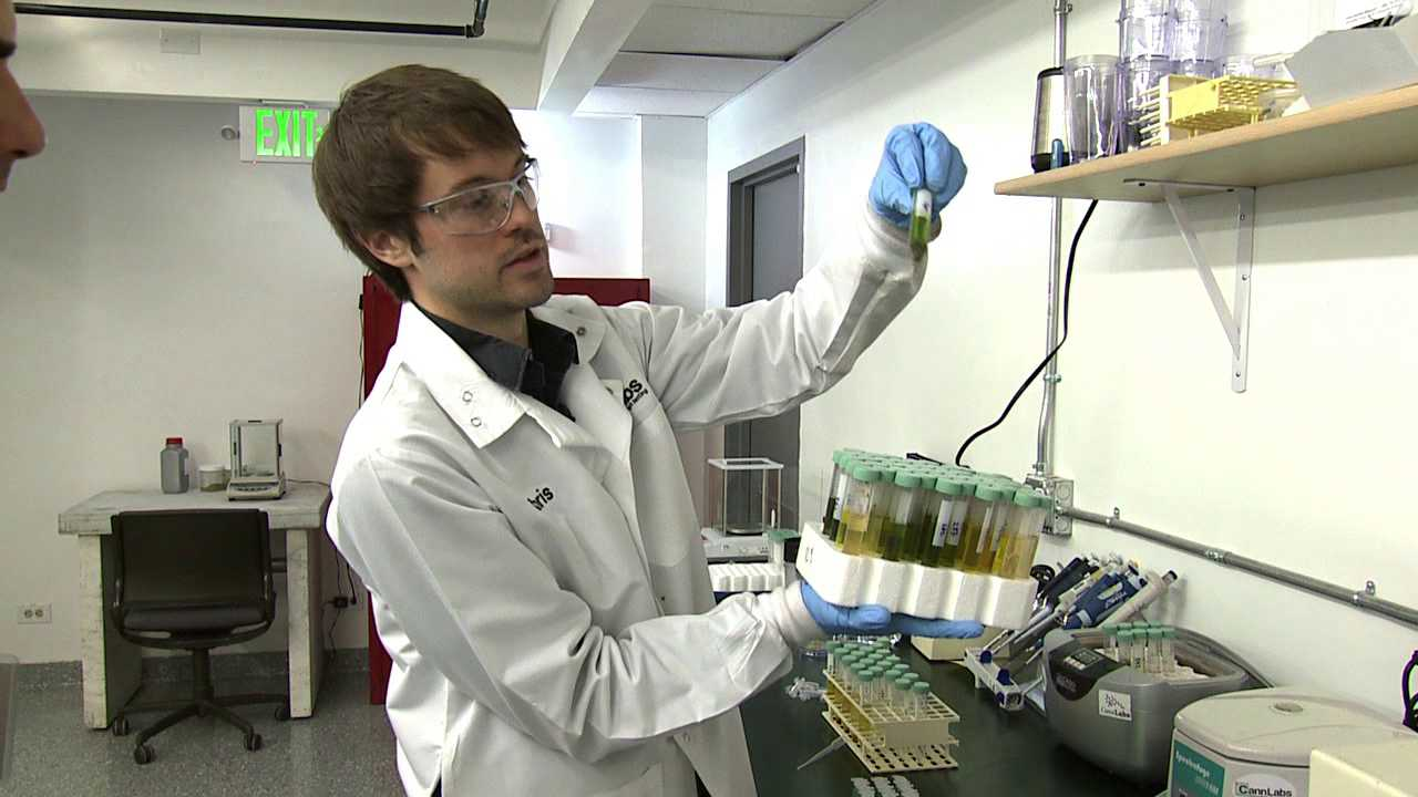 Lab testing of marijuana edibles