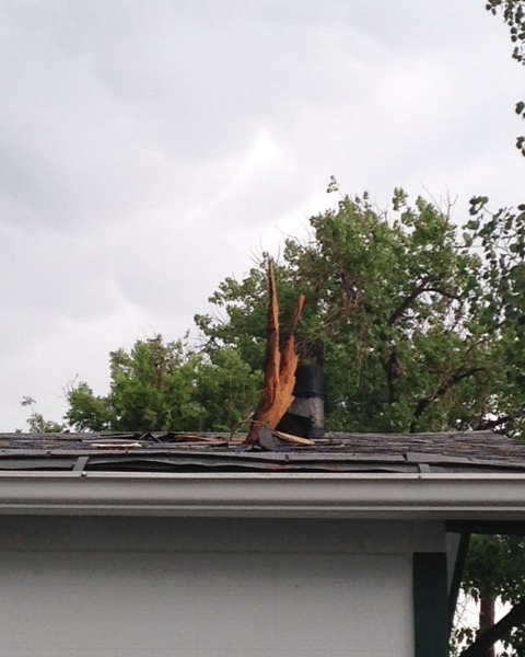 Lighting struck at tree in a residential area of Englewood June 8, 2014, damaging surrounding homes. (Photo: Janice Beemer)