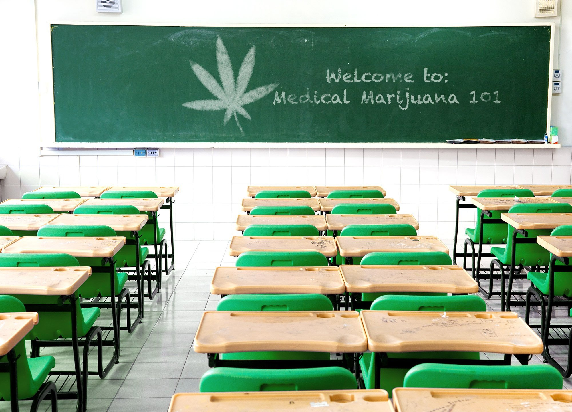 """A new school is launching this fall that will teach you everything you've ever wanted to know about pot. The Northeastern Institute of Cannabis will teach classes like """"Medical Marijuana 101."""""""