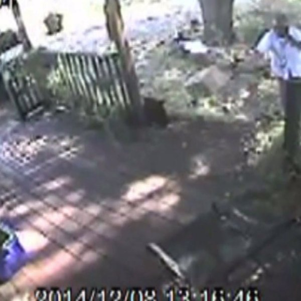 USPS worker throws a package deliver to a door