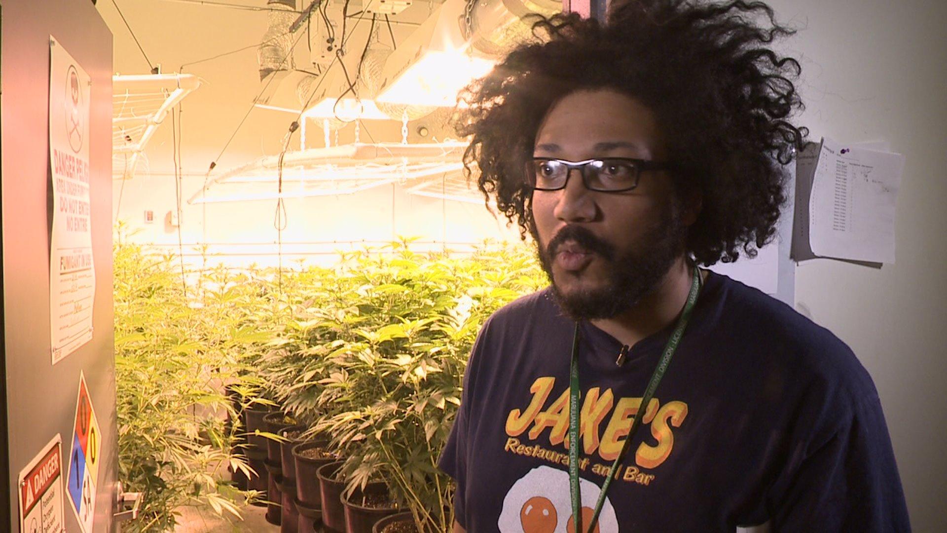 Elias Tempton grows marijuana