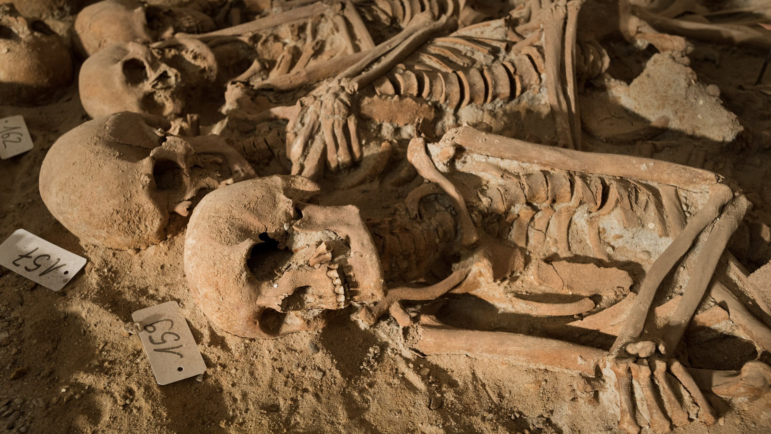 Workers digging underneath a Paris supermarket found as many as 200 skeletons. The skeletons were found as workers were doing renovations to the store in January, 2015. (Photo: CNN)