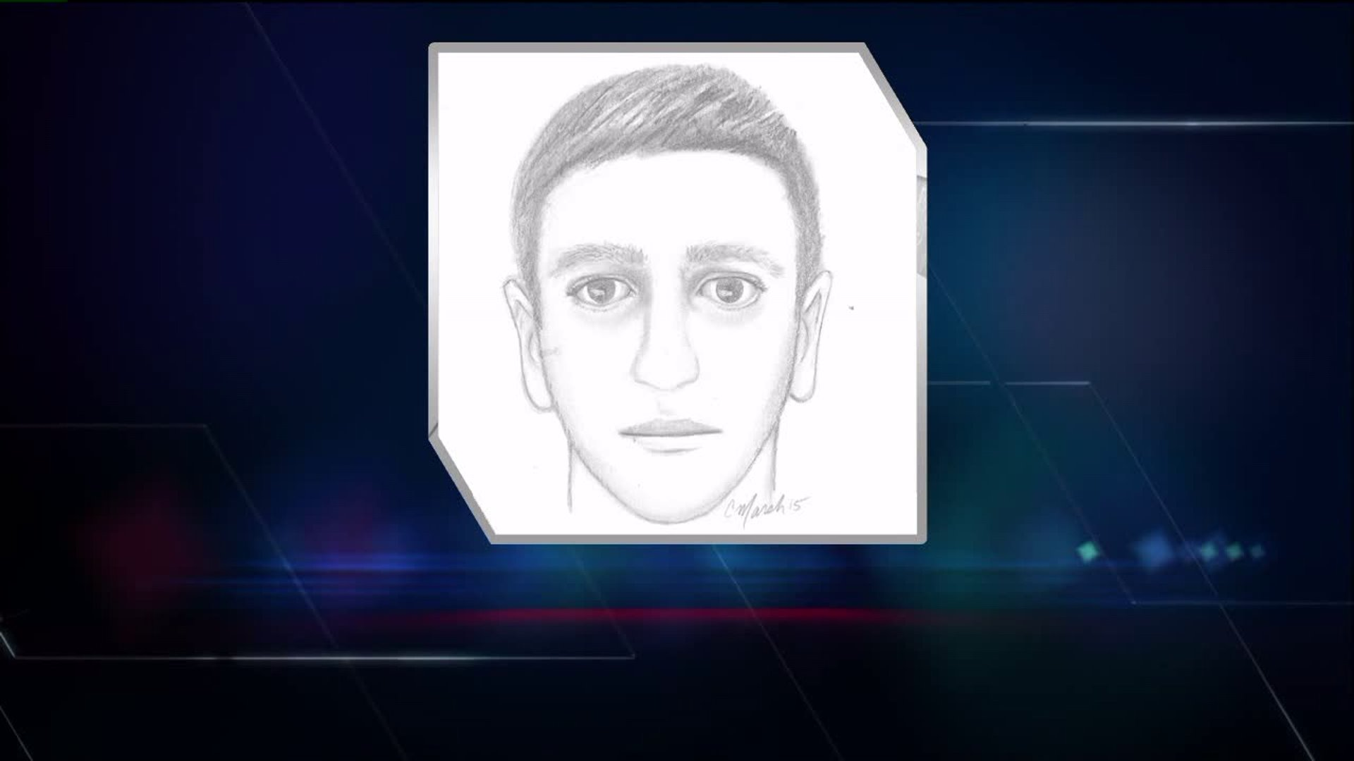 Sketch of suspected City Park groper