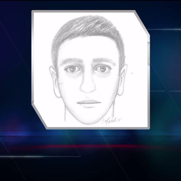 Sketch of suspected City Park groper