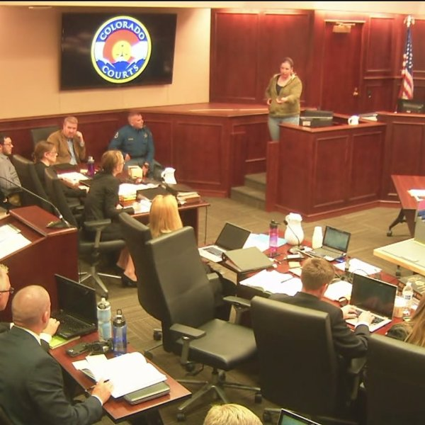 Witness Tarra Bahl demonstrating how the shooter was holding his gun to the court on May 20, 2015.