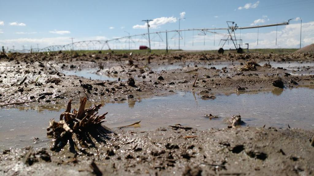 Too much water in Morgan County, Colo.