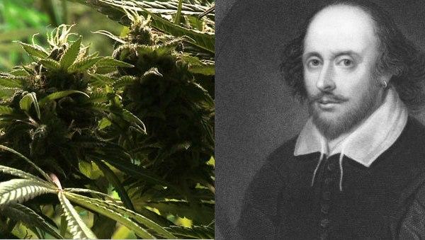 Marijuana plant, William Shakespeare (Photo: Thinkstock)
