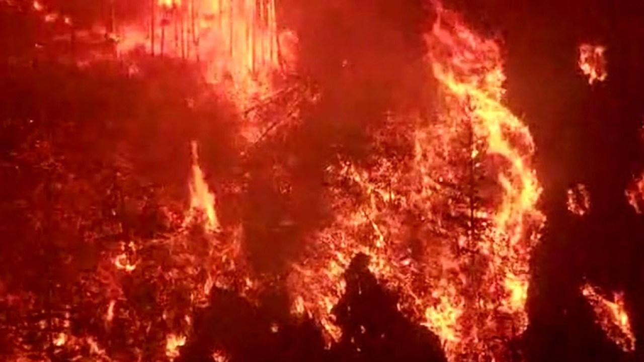 Bericht: Arbeit reduzieren wildfire Risiken hat wirtschaftliche Vorteile