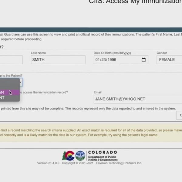 A screen grab of the CIIS form