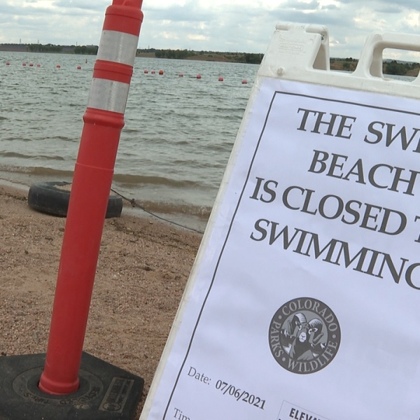 """A sign that says """"THE SWIM BEACH IS CLOSED TO SWIMMING"""" beside an orange caution cone with a lake in the background in daylight"""