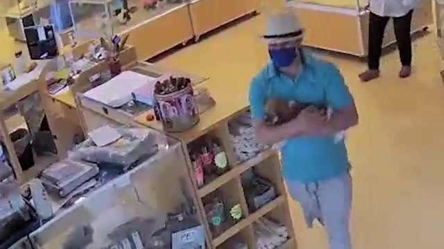 Surveillance image of man in hat and mask carrying puppy